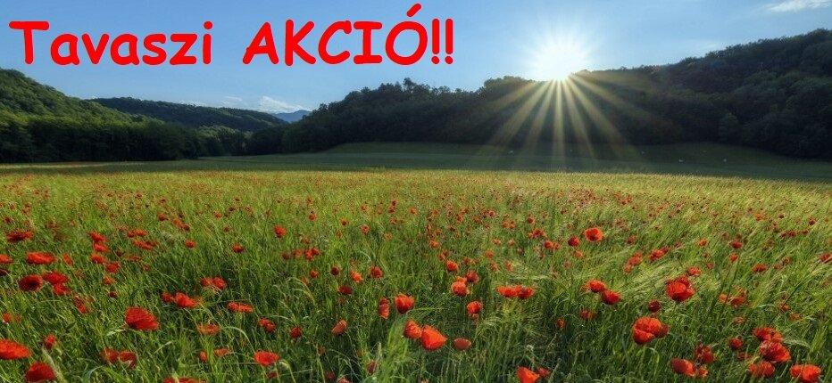 Tavaszi Akció!